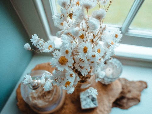 From above of bouquet of fresh flowers with delicate petals in vase on windowsill