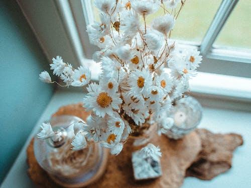 Delicate white flowers in vase on windowsill