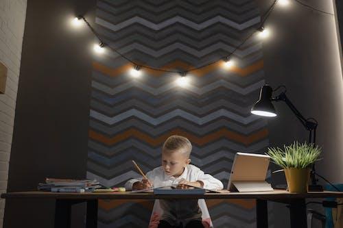 Ingyenes stockfotó aan lichtbak toevoegen, álló kép, általános iskola témában