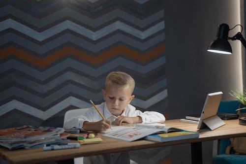 Ingyenes stockfotó aan lichtbak toevoegen, általános iskola, arckifejezés témában