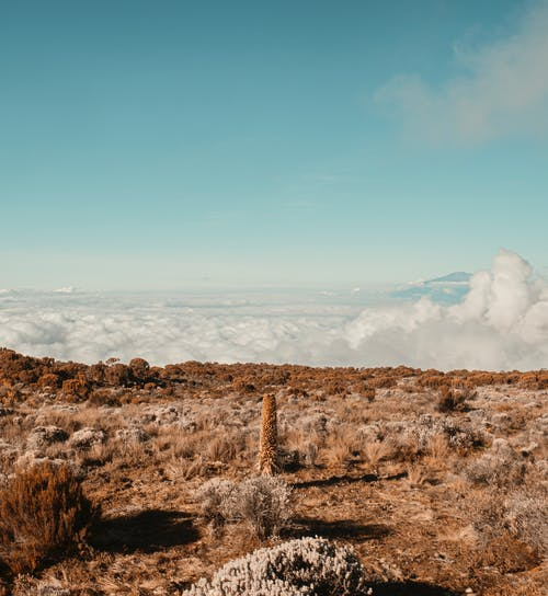 Free stock photo of above clouds, africa, blue sky