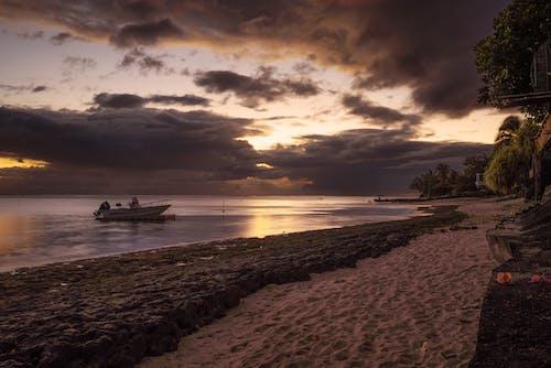Gratis stockfoto met aan het strand, avond, dageraad, fel
