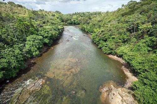 Foto stok gratis el rama, nikaragua, rio mico