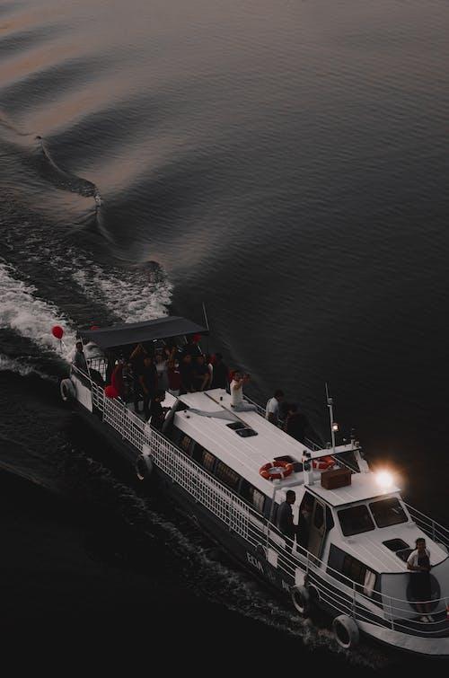 Foto profissional grátis de água, balsa, barco