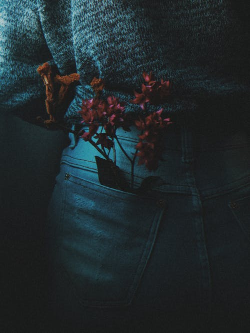 Blue Denim Jeans With Red Flowers