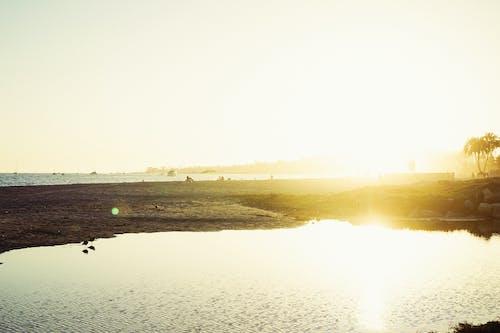 Gratis arkivbilde med sjø, sol, solskinn, strand