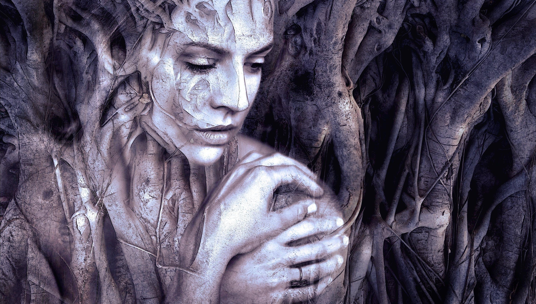 Free stock photo of aesthetic, art, beauty, branch