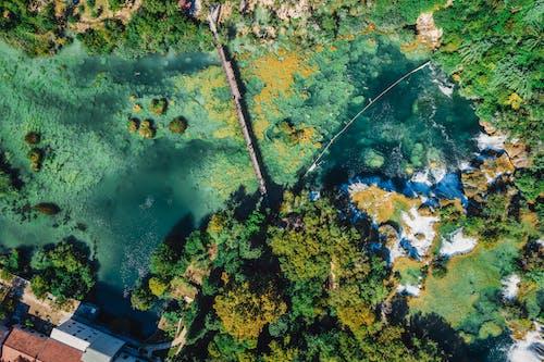 가을, 강, 강물, 강하의 무료 스톡 사진