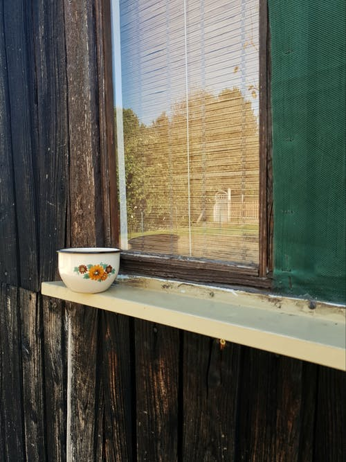 Free stock photo of cottage, cup, nature