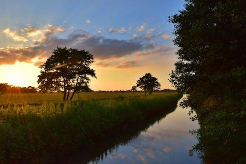 Imagine de stoc gratuită din apă, apus, arbori, cer