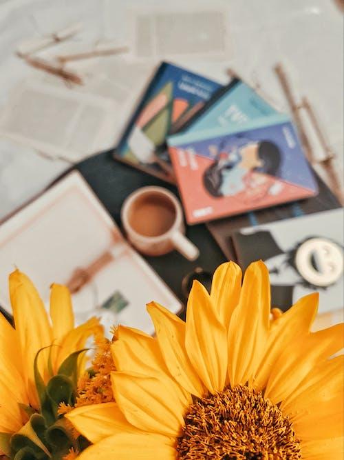 Yellow Sunflower Beside White Ceramic Mug