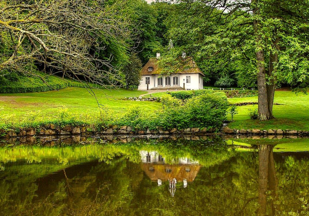 Weißes Und Braunes Haus, Umgeben Von Bäumen