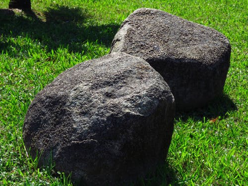 Two Gray Stone Fragments on Green Grass