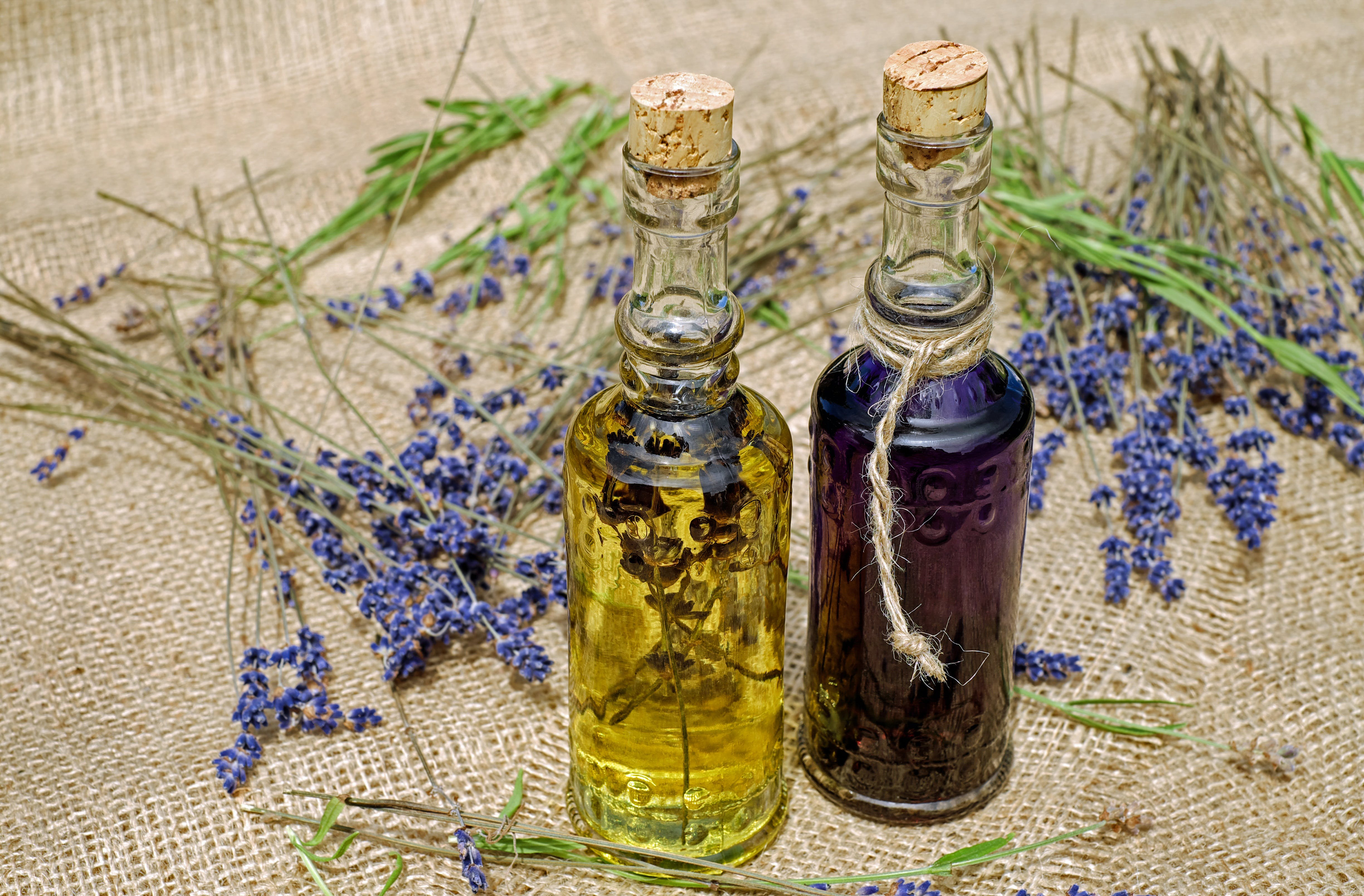 Free stock photo of wellness, oil, care, lavender