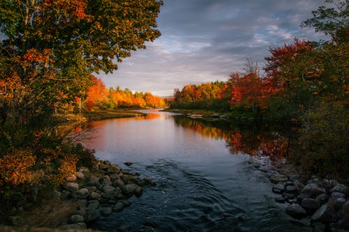 Picturesque scenery of tranquil water of river flowing among multicolored trees placed in autumn forest under cloudy sky in daytime