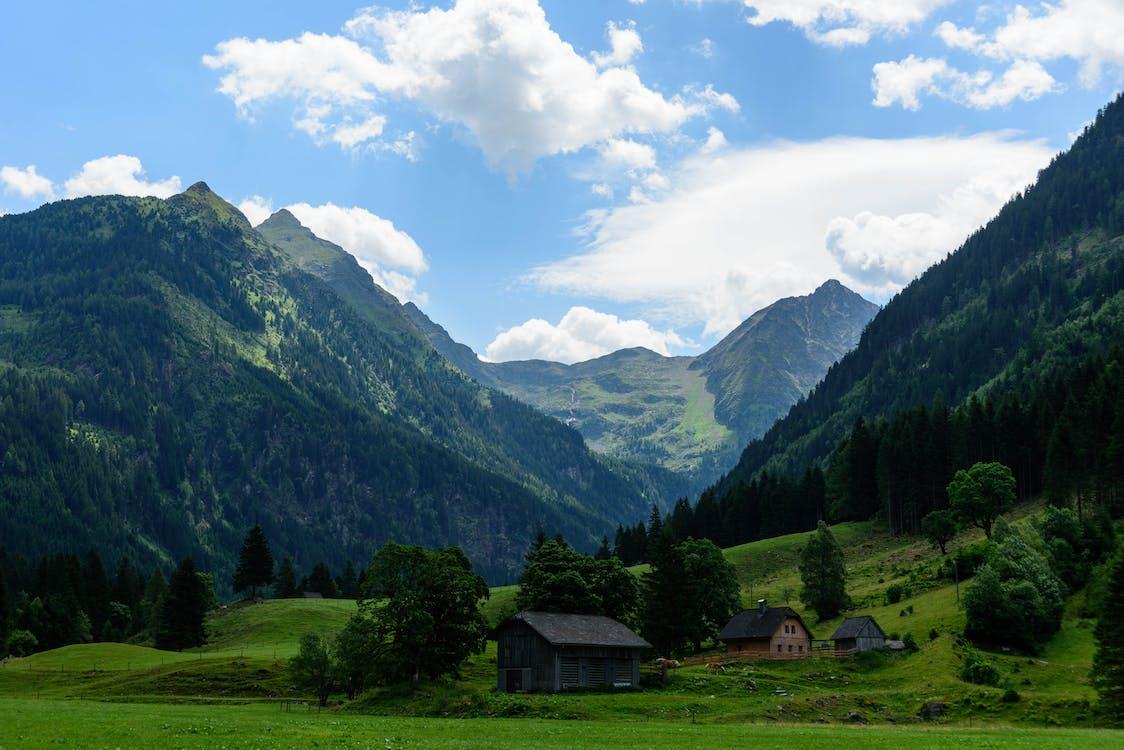 alpesi, Alpok, domb