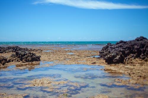 Ingyenes stockfotó beachs, strand, strand víz témában