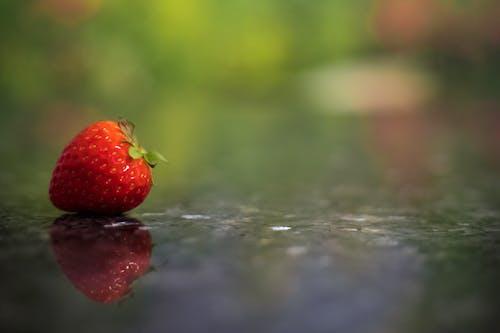 Imagine de stoc gratuită din boabe, căpșună, delicios, estompare