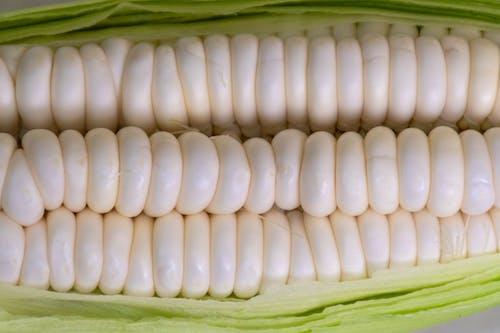 Darmowe zdjęcie z galerii z deser, dieta, jedzenie, kolba kukurydzy