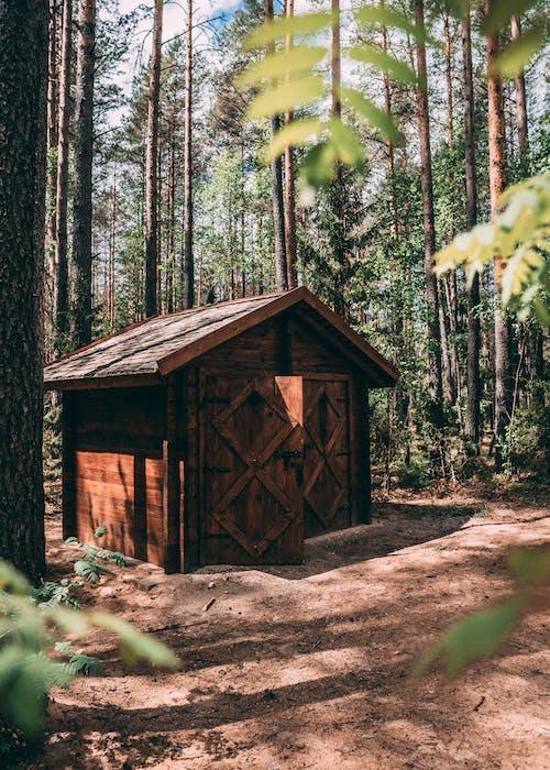Ảnh lưu trữ miễn phí về aan lichtbak toevoegen, cabin, các, căn nhà