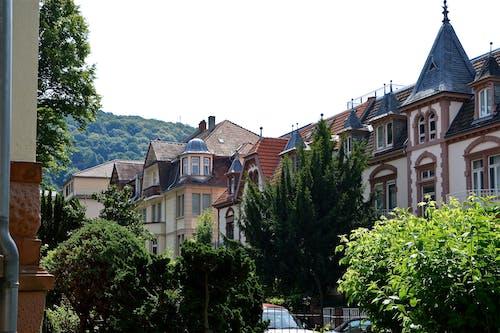 Ingyenes stockfotó ablakok, belváros, bokrok, család témában