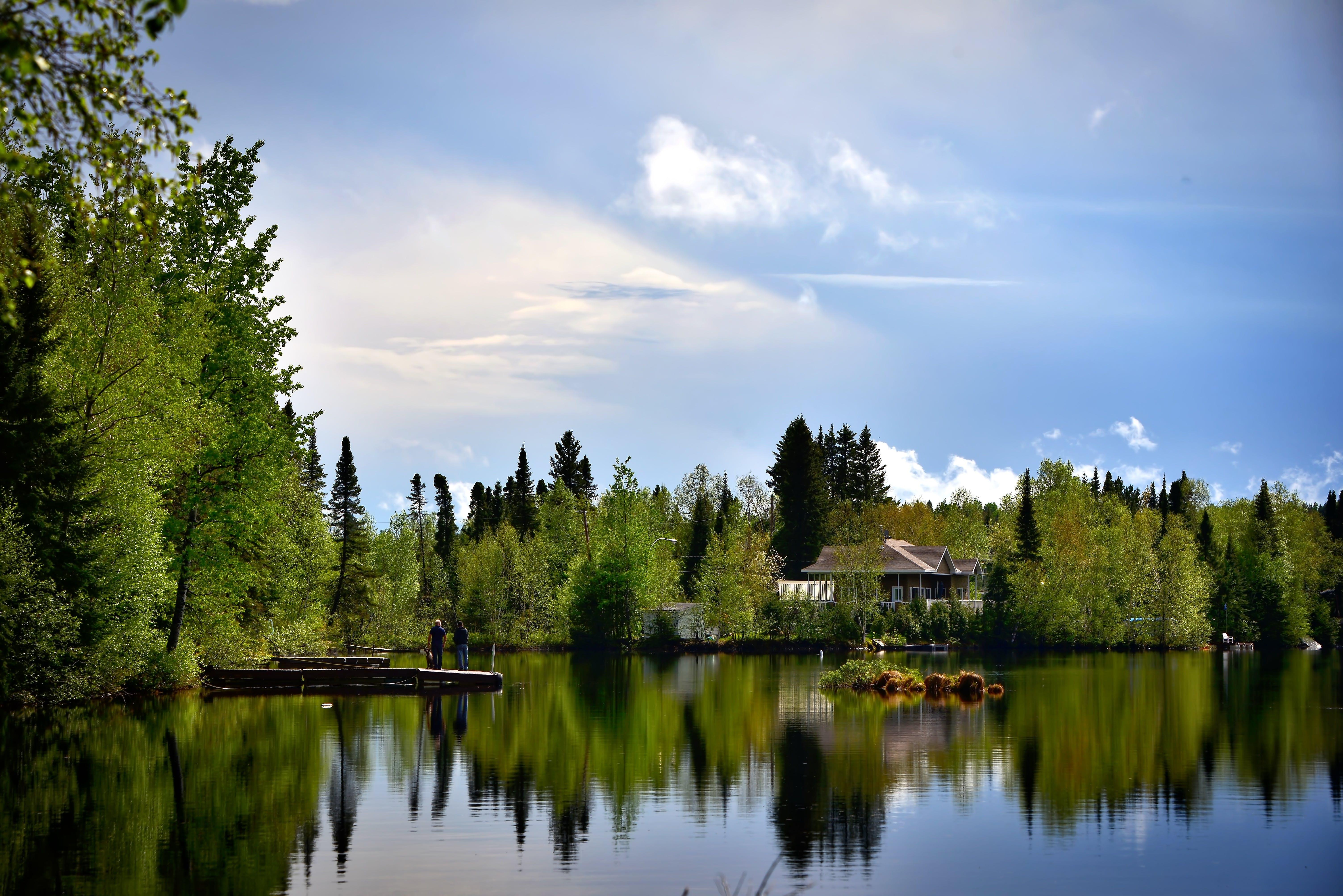 Gratis lagerfoto af blå himmel, Canada, dagslys, folk