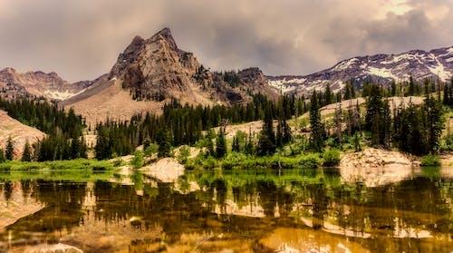 Gratis stockfoto met berg, bomen, h2o, kalm