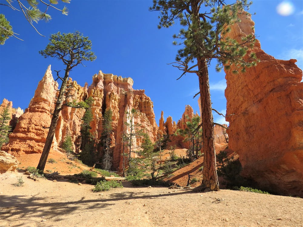 appelsin, bryce canyon, canyon