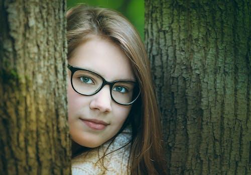 공원, 귀여운, 나무, 나무 껍질의 무료 스톡 사진