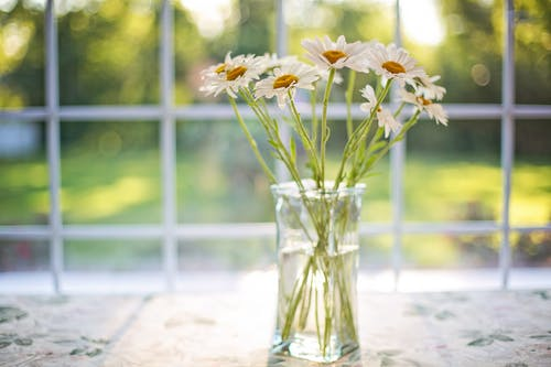 Белые цветы на стеклянной вазе