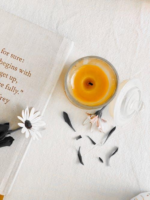 ahşap, aile, aromaterapi, aşındırmak içeren Ücretsiz stok fotoğraf