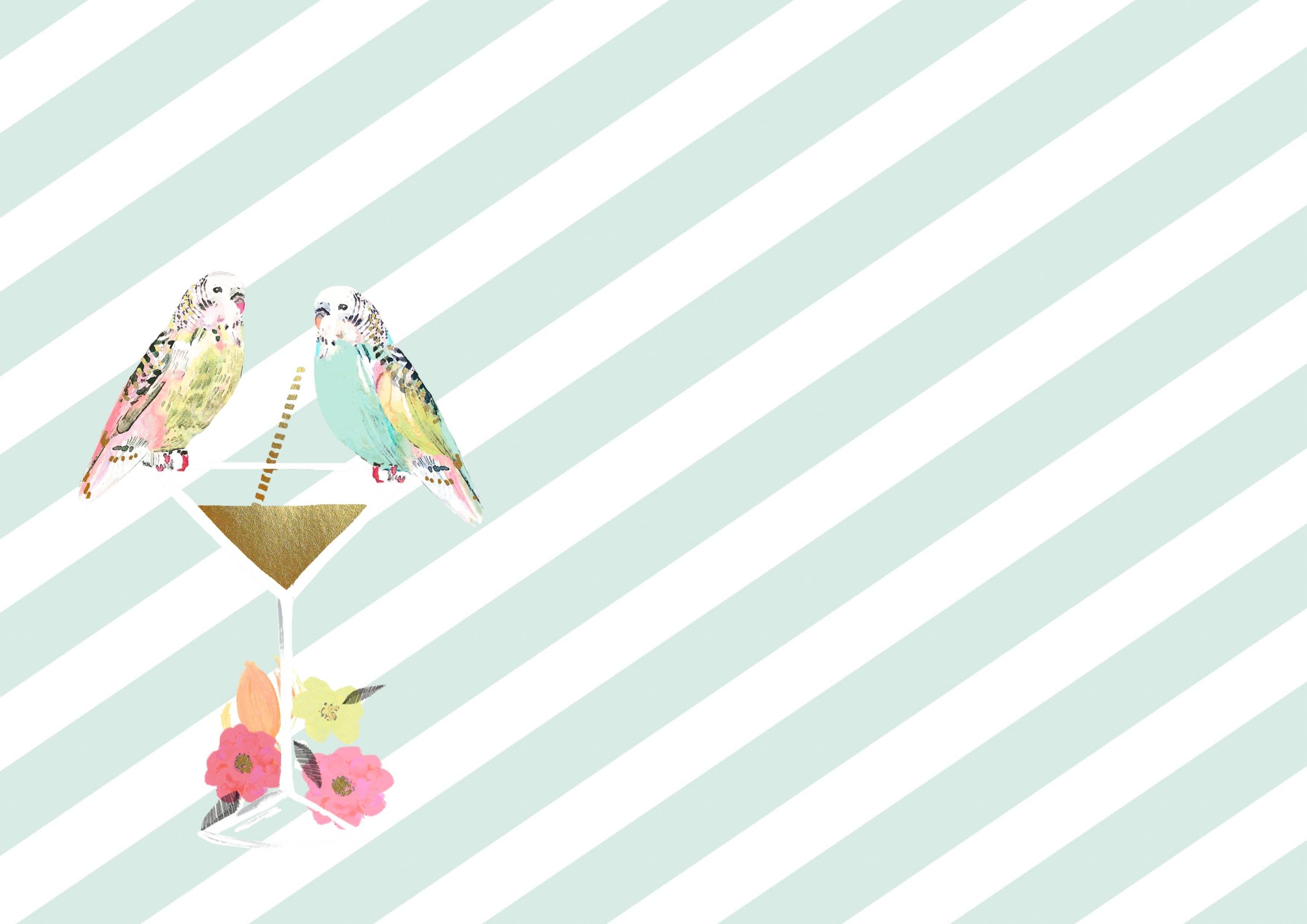 Free stock photo of bird, art, flowers, drink