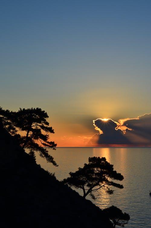 Бесплатное стоковое фото с вода, восход, деревья, закат