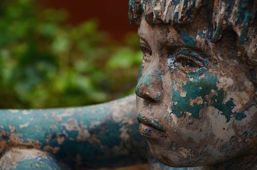 Gratis lagerfoto af barn, close-up, Dreng, figur