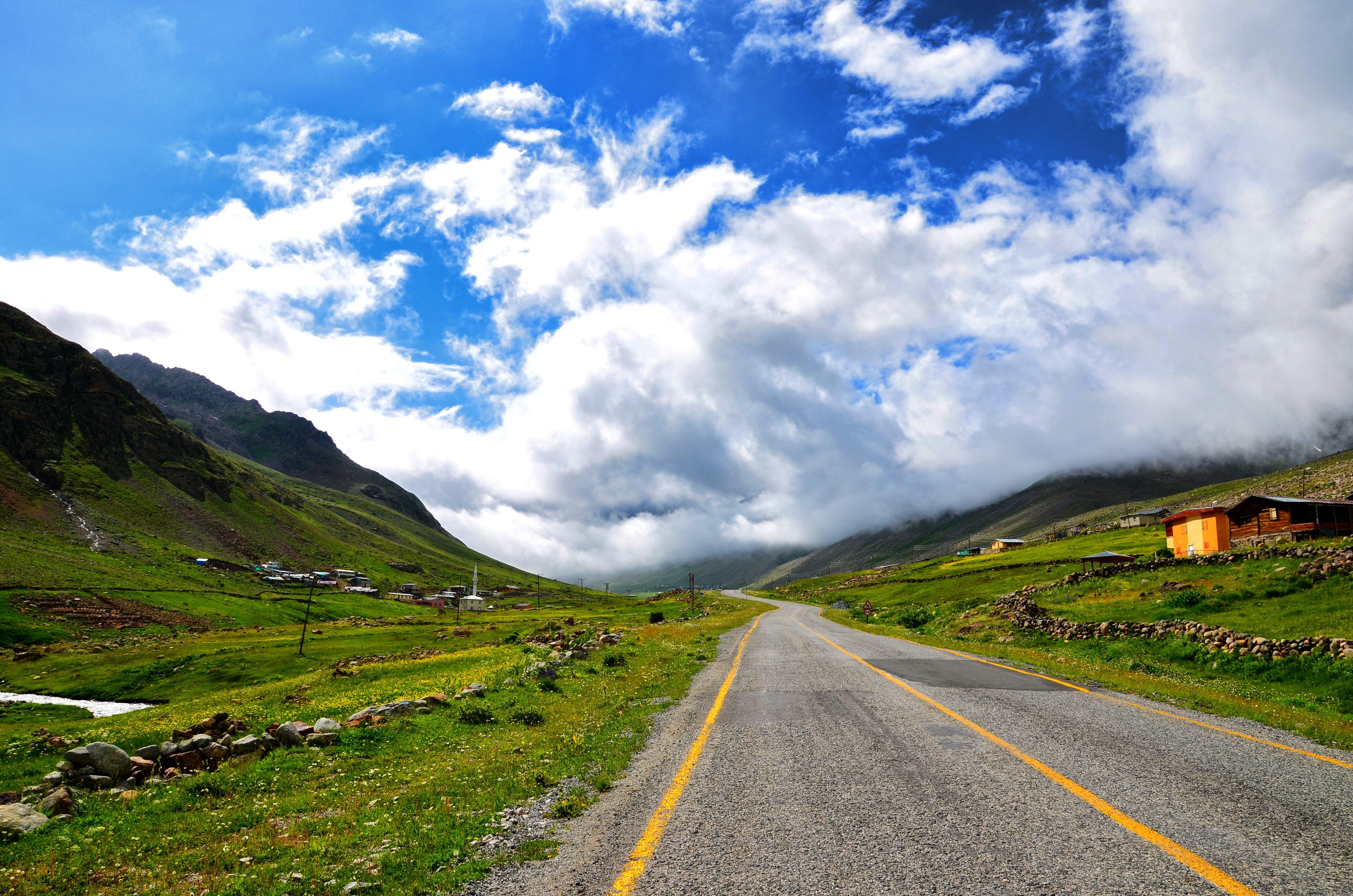 Road in Between of Green Grass