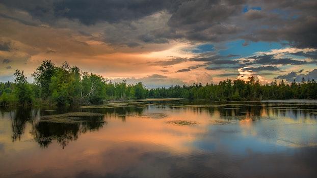 Desktop background of light, dawn, landscape, sky