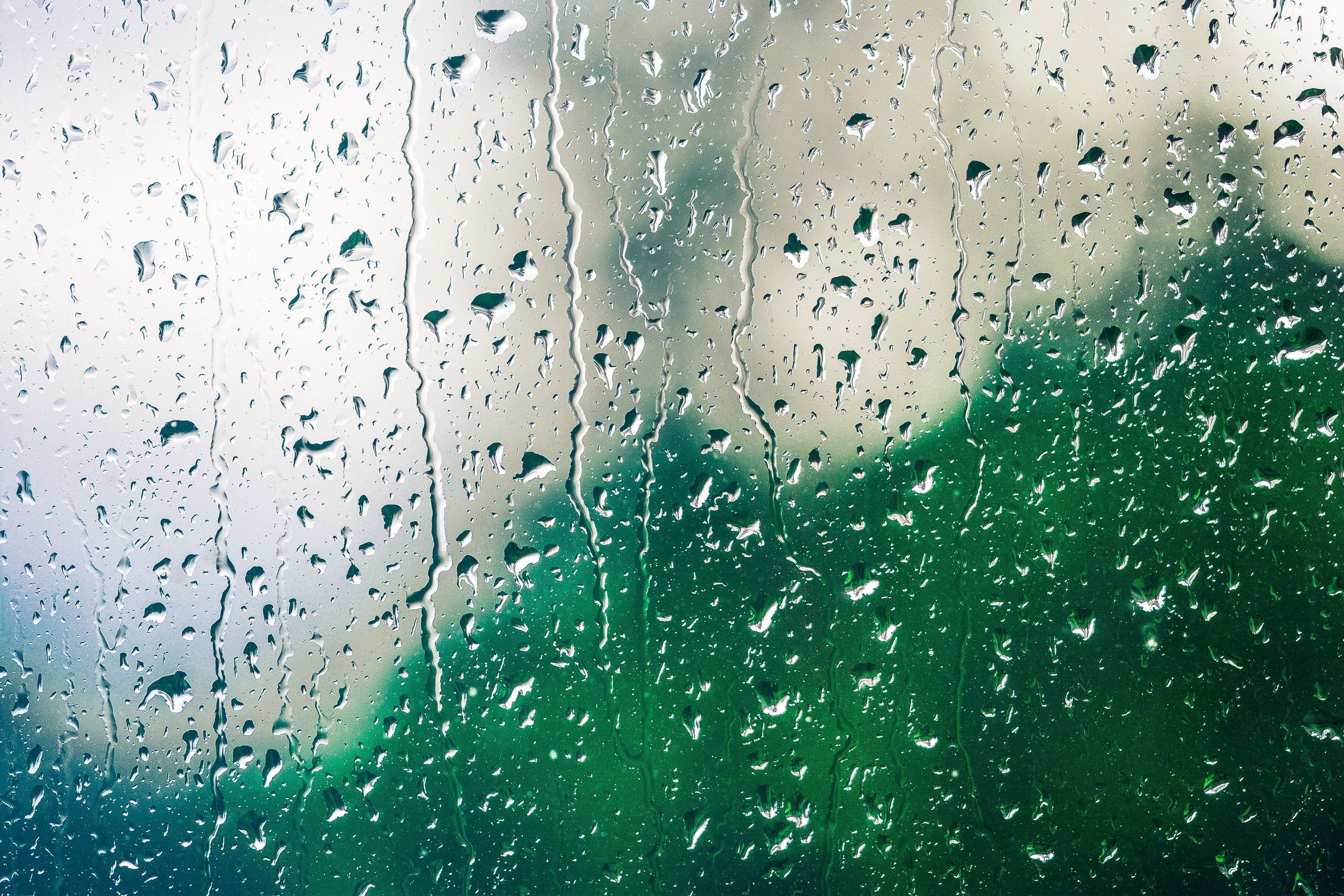 free stock photo of dew glass rain