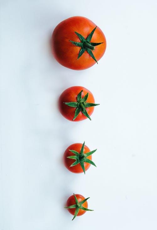 Fotos de stock gratuitas de brillante, comida, crecer, delicioso