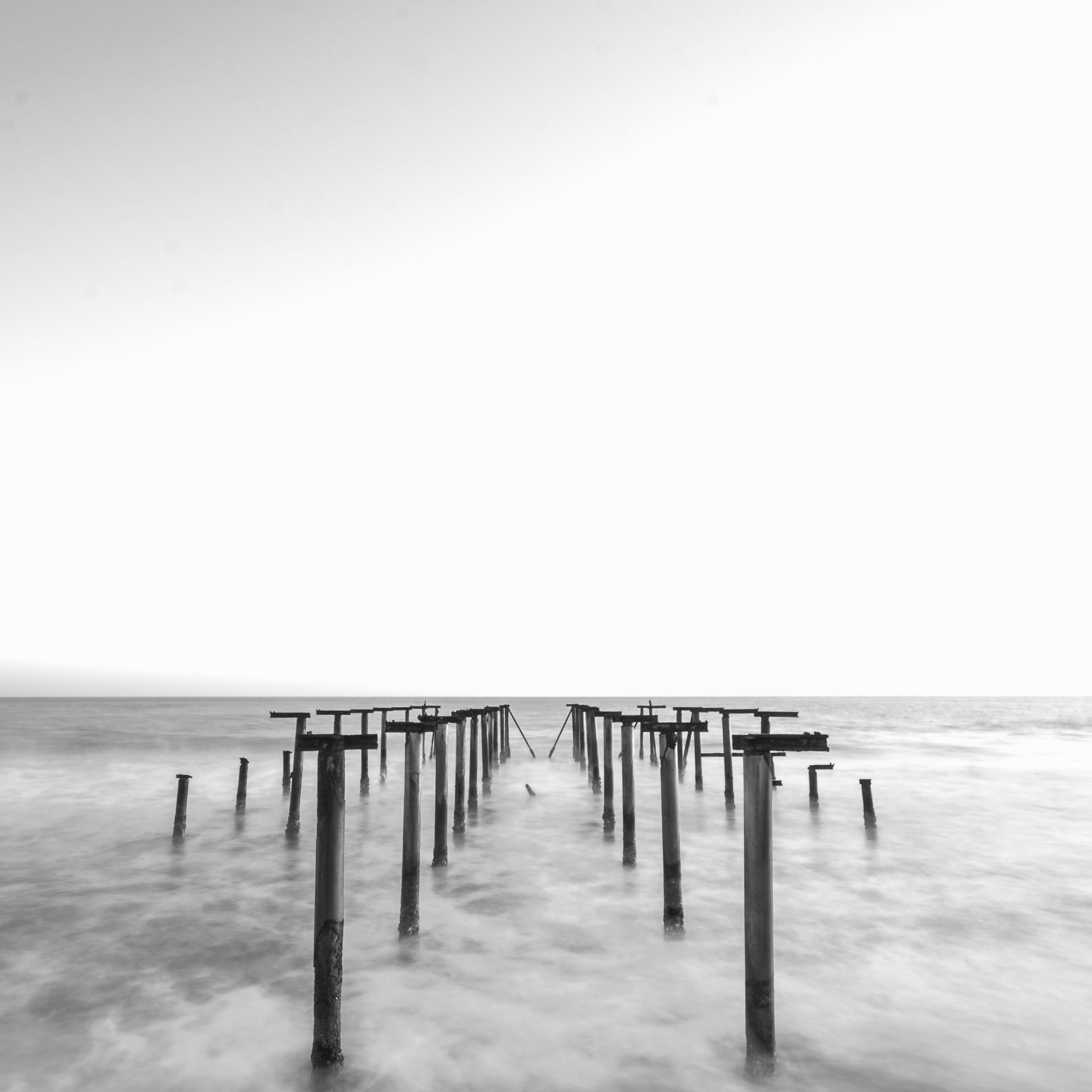 Free stock photo of jetty, sea, black-and-white, dawn