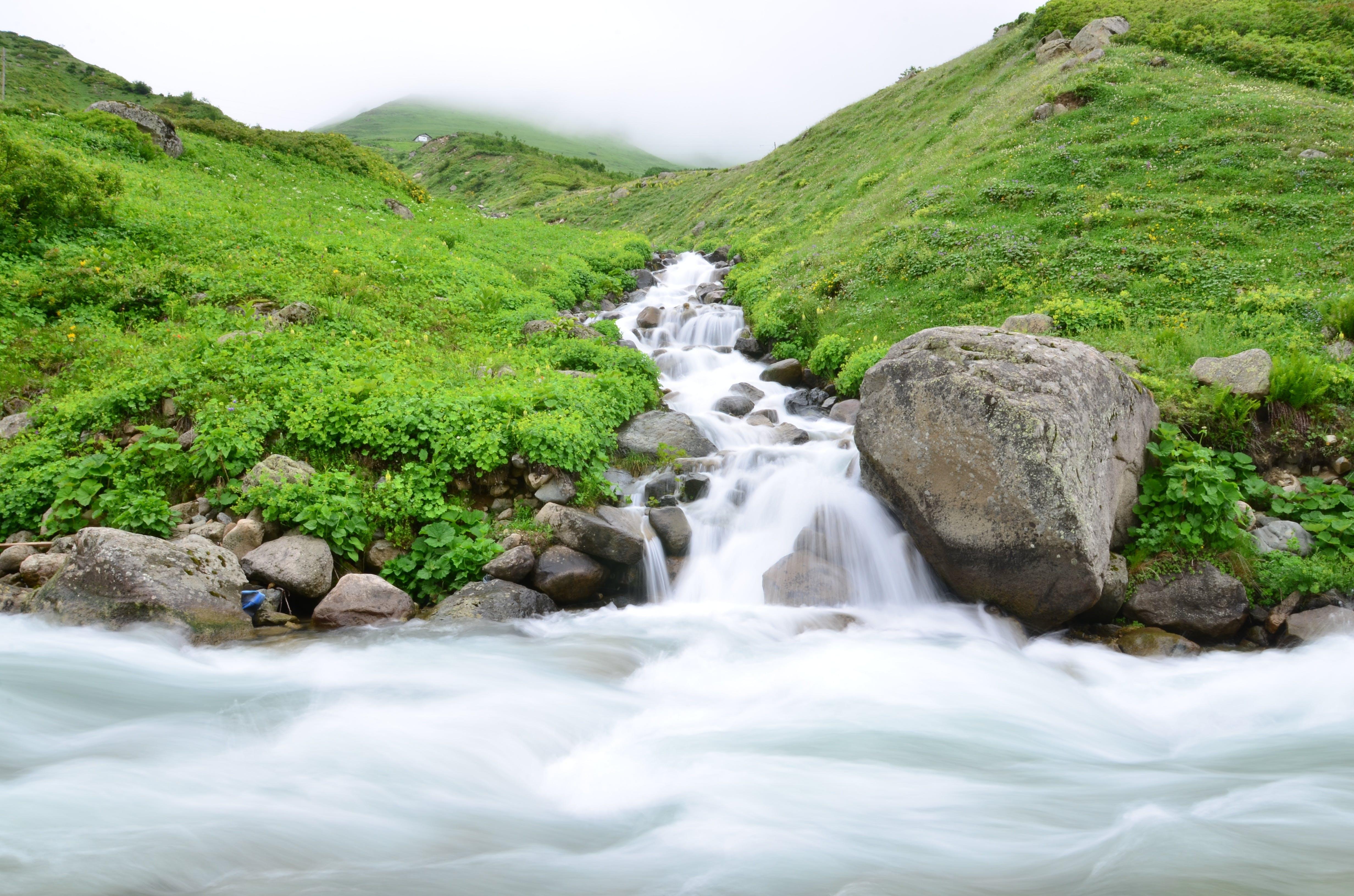 Water Stream Between Grass Fields