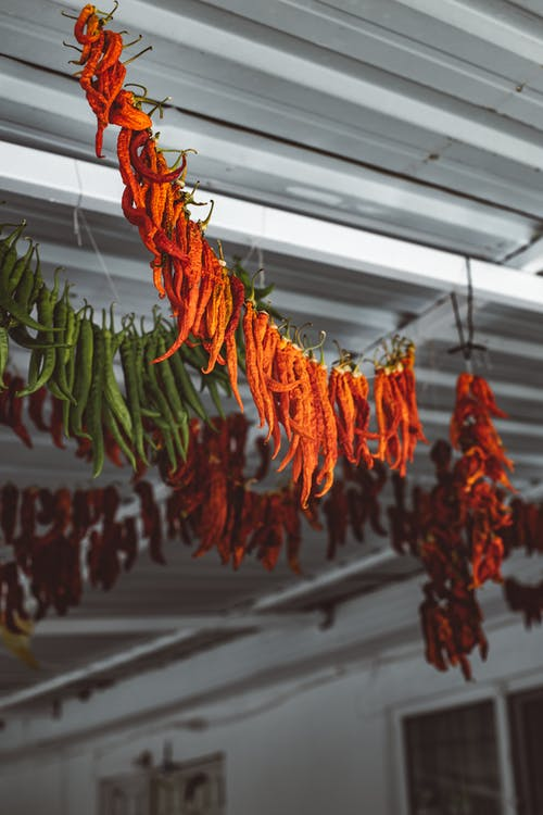 Row of Red Chili Peppers Hanging on a String