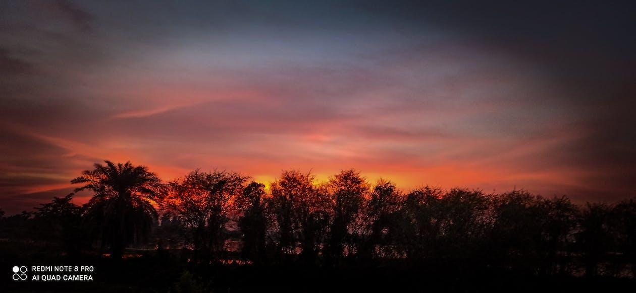 捕获, 紅色的天空, 美丽的大自然 的 免费素材图片