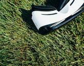 grass, lawn, technology
