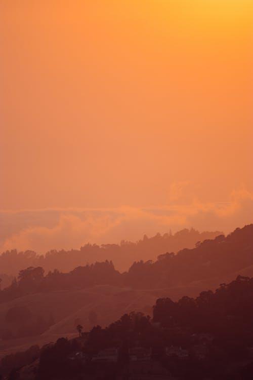 インスピレーション, オレンジ, カラフル, サイレントの無料の写真素材