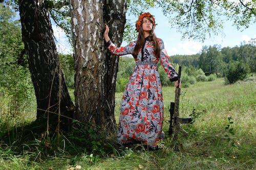 Fotos de stock gratuitas de árbol, arma, atacar