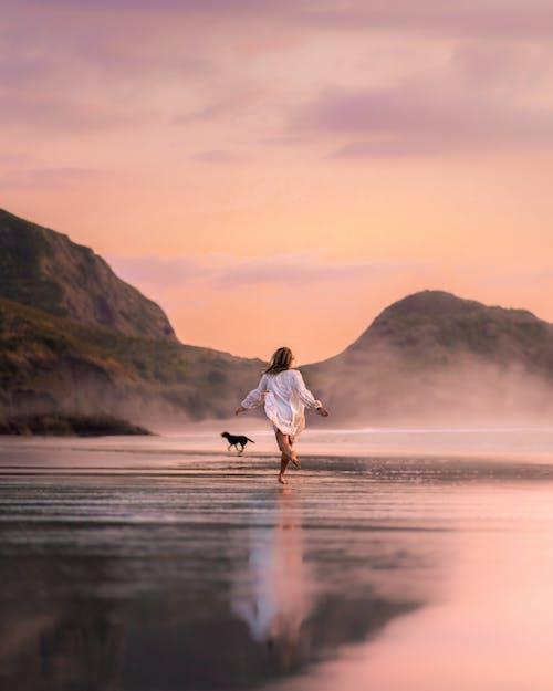 不可识别的女人,与狗在暮光之城在风景如画的海滩上运行