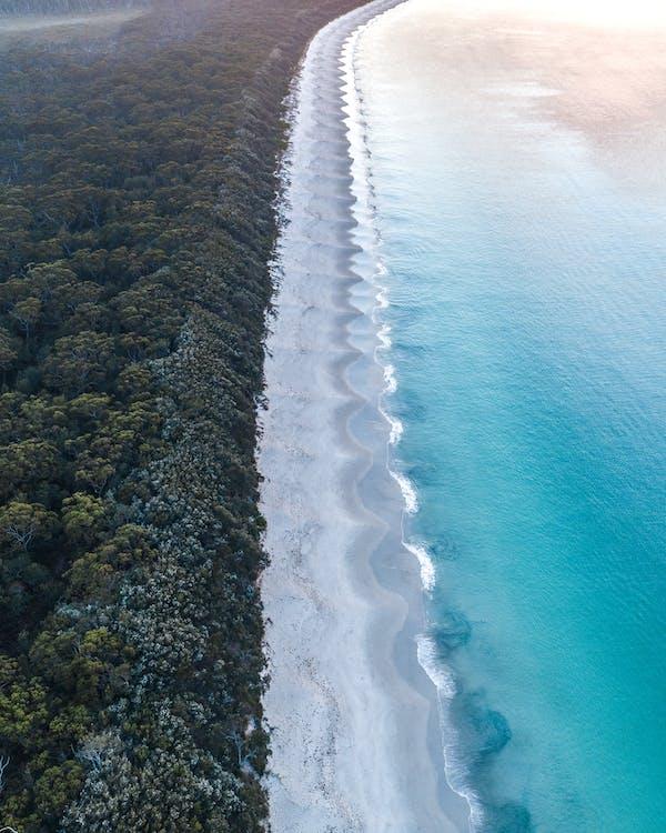 Tropical ocean near beach and greenery trees