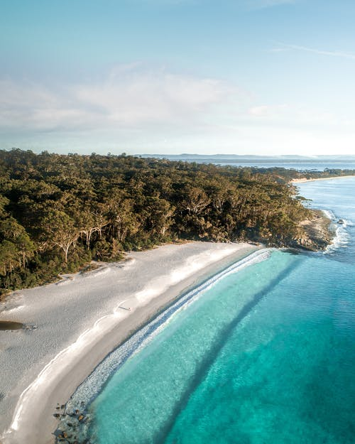 Tropical sea near greenery trees and sandy shore