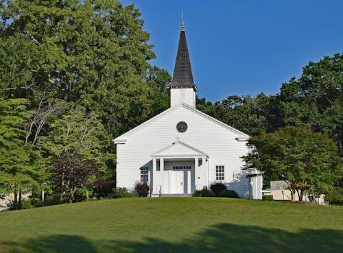 Foto d'estoc gratuïta de arbres, arquitectura, blanc, capella