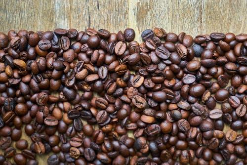 Foto stok gratis biji, biji kopi, biji-bijian, cokelat